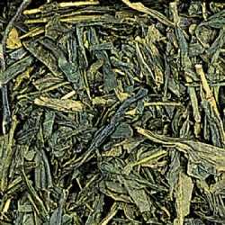 Japanese Green Tea Sencha Le Grandi Origini collection in 100 grams tin